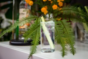Ketel One Botanical Spritz with a Dishtales Twist